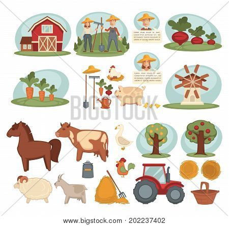 Wooden barn, male and female farmers, sweet beet, crispy carrot, equipment for work on ground, old mill, domestic livestock, fruit trees. Modern tractor and small haystacks vector illustrations.
