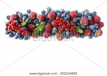 Various fresh summer berries on white background. Ripe raspberries blueberries and red currants mint. Berries at border of image with copy space for text. Background berries. Top view.
