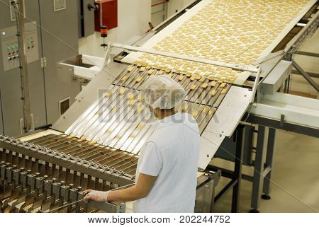 Biscuit and waffle production factory line. Production lines