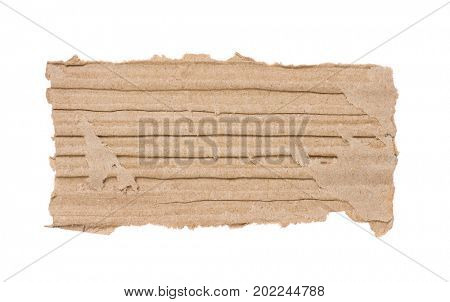 Piece of corrugated cardboard torn, isolated on white background. Cardboard texture ragged edge.