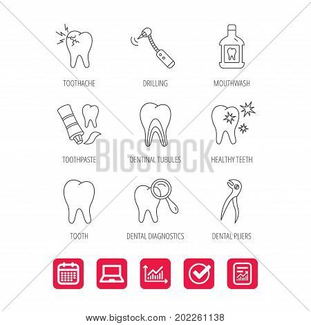 Tooth, stomatology and toothache icons. Mouthwash, dental pliers and diagnostics linear signs. Dentinal tubules, drilling icons. Report document, Graph chart and Calendar signs. Vector