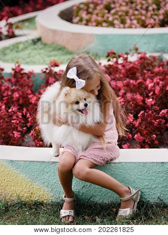 A smiling, joyful young girl hugging her fluffy, white pet doggy on a blurred park background. A dark blonde female kid in a pink dress sitting in a colorful park with a beloved little dog.