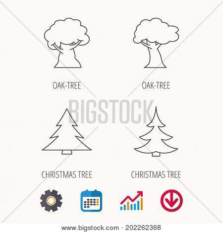Tree, oak-tree and christmas tree icons. Forest trees linear signs. Calendar, Graph chart and Cogwheel signs. Download colored web icon. Vector