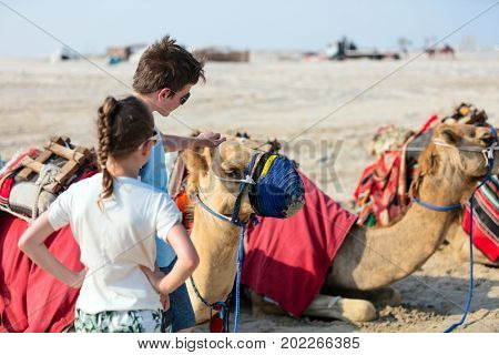 Kids brother and sister with camels at Qatar desert