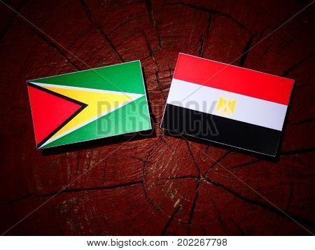 Guyana Flag With Egyptian Flag On A Tree Stump Isolated