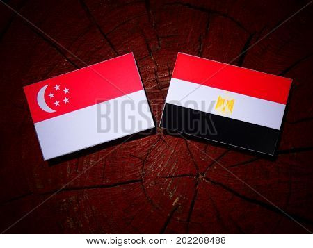 Singaporean Flag With Egyptian Flag On A Tree Stump Isolated