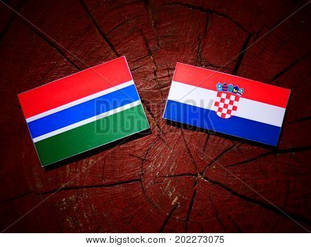Gambia Flag With Croatian Flag On A Tree Stump Isolated