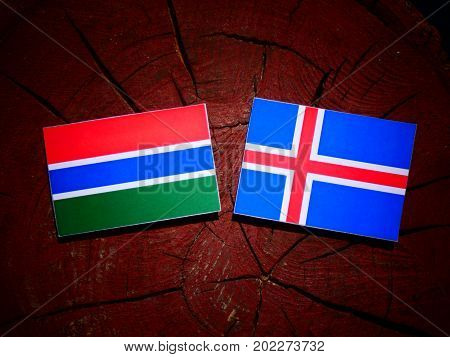 Gambia Flag With Icelandic Flag On A Tree Stump Isolated