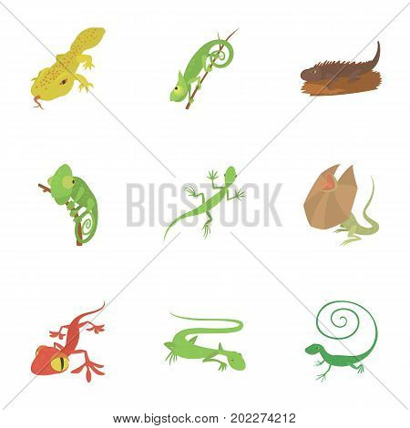 Different lizard icons set. Cartoon set of 9 different lizard vector icons for web isolated on white background