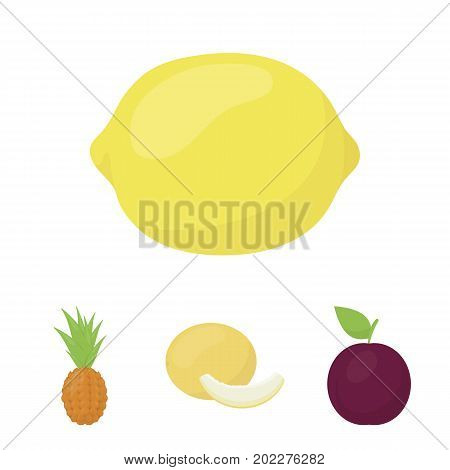 Melon, plum, pineapple, lemon.Fruits set collection icons in cartoon style vector symbol stock illustration .