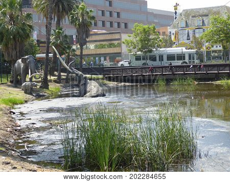 Pond and animals replicas in front of the La Brea Tar Pits & Museum, Los Angeles, California, circa may 2017.