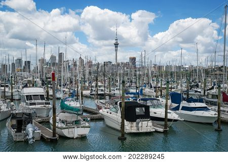 Yacht At Harbour In Auckland, New Zealand