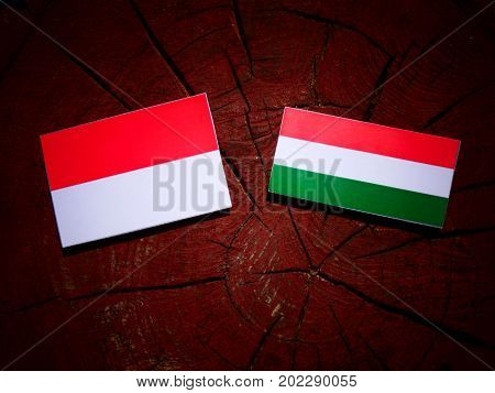 Indonesian Flag With Hungarian Flag On A Tree Stump Isolated