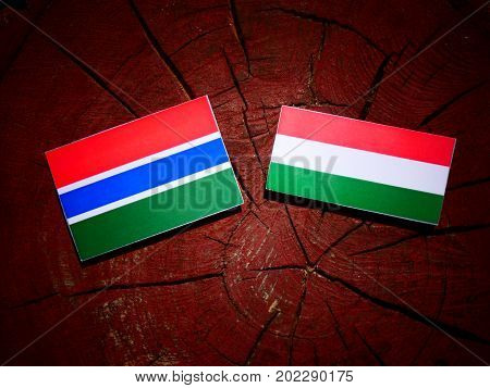 Gambia Flag With Hungarian Flag On A Tree Stump Isolated