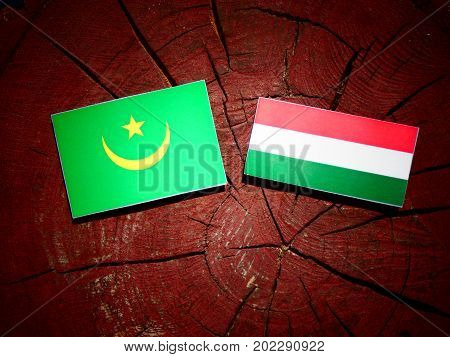 Mauritania Flag With Hungarian Flag On A Tree Stump Isolated