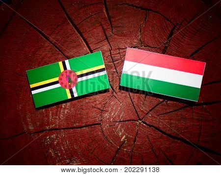 Dominica Flag With Hungarian Flag On A Tree Stump Isolated
