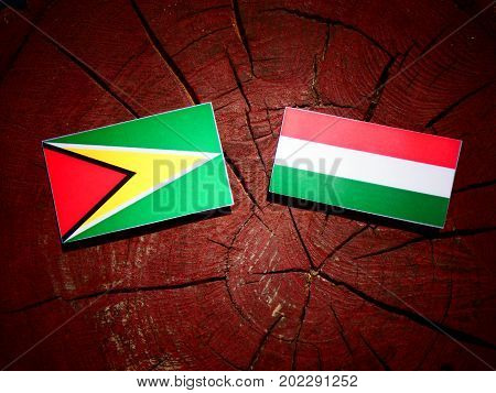 Guyana Flag With Hungarian Flag On A Tree Stump Isolated