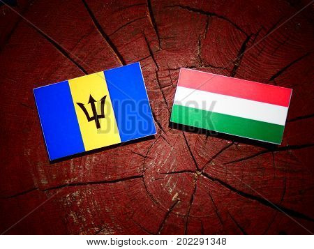 Barbados Flag With Hungarian Flag On A Tree Stump Isolated
