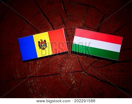 Moldovan Flag With Hungarian Flag On A Tree Stump Isolated