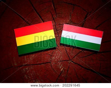 Bolivian Flag With Hungarian Flag On A Tree Stump Isolated
