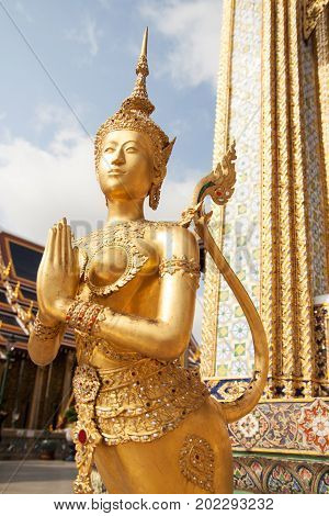 Golden Kinnari statue at Temple of Emerald Buddha (Wat Phra Kaew) in Grand Royal Palace. Kinnari is half-bird, half-woman creature at south-east Asian Buddhist mythology. Wat Phra Kaew is popular famous tourist attraction in Bangkok, landmark of Thailand,