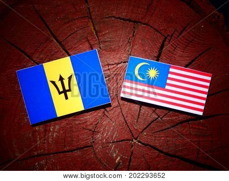 Barbados Flag With Malaysian Flag On A Tree Stump Isolated