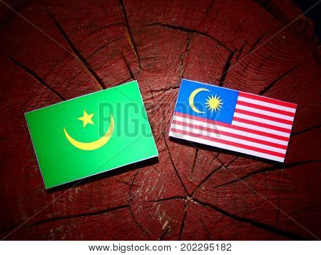 Mauritania Flag With Malaysian Flag On A Tree Stump Isolated