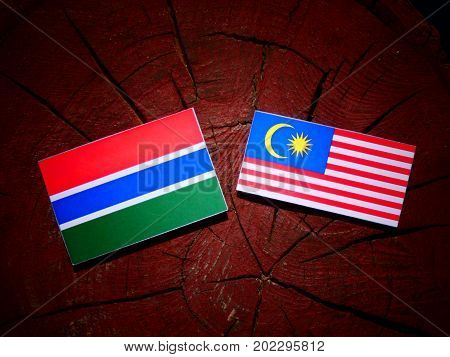 Gambia Flag With Malaysian Flag On A Tree Stump Isolated