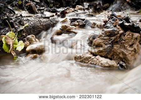 Mountain Stream In Autumn Colors In The National Park