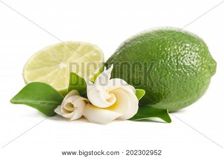 Green Lime With Half Of  Juicy Lime And Beautifull Flower Isolated On White Background