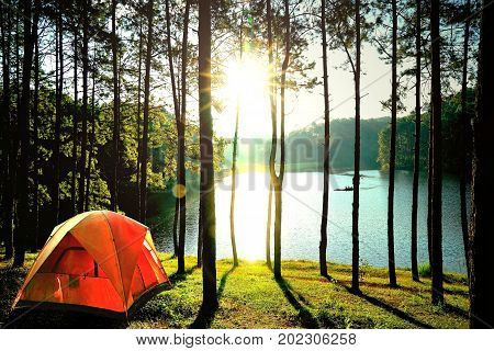 Orange camping tents in pine tree forest by the lake at Pang Oung Lake (Pang Tong reservoir) Mae hong son Thailand.