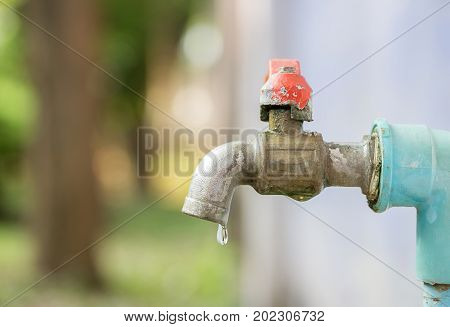 Close up to faucet water in the garden with blur background. copy space for design