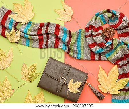 Fall Fashion Glamour Lady Look.Trendy Scarf. Fashion Stylish Glamour Handbag Clutch. Fall Leaves. Autumn Minimal. Vanilla Pastel colors.
