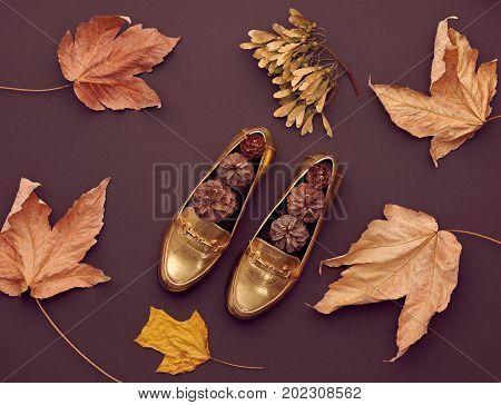 Autumn Arrives. Fall Fashion Design. Fall Leaves Background. Trendy fashion Stylish Glamour Gold Shoes. Retro
