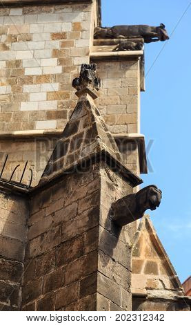 Gargoyles on a Stone Church in Barcelona