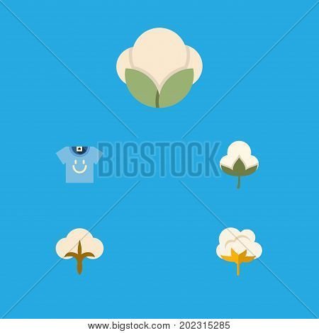 Flat Icon Fiber Set Of Blouse, Fiber, Fluffy And Other Vector Objects