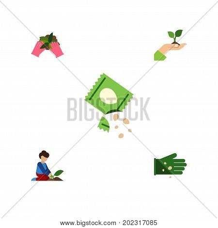 Flat Icon Sow Set Of Care, Plant, Packet And Other Vector Objects