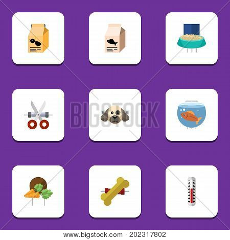 Flat Icon Animal Set Of Fishbowl, Temperature Measurement, Puppy And Other Vector Objects