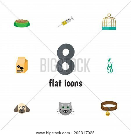 Flat Icon Animal Set Of Puppy, Vaccine, Nutrition Box And Other Vector Objects
