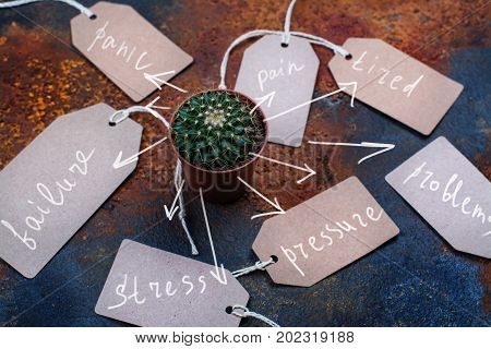 Negative emotions concept, cactus and tags with written emotions