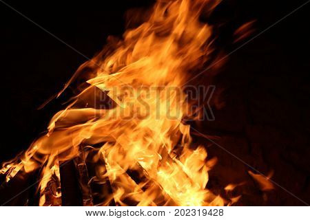 Burning orange fire in dark night, calm and beautiful scene.