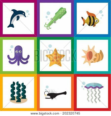 Flat Icon Marine Set Of Playful Fish, Octopus, Sea Star And Other Vector Objects