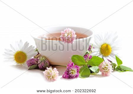 Herbs tea from curative plants on white background. Herbal Medicine.