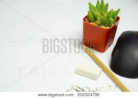 rubber pencil clip mouse with cactus and handwriting success word and failed word delete by rubber. Failed word delete by rubber success word write by pencil with clip mouse cactus. concept idea