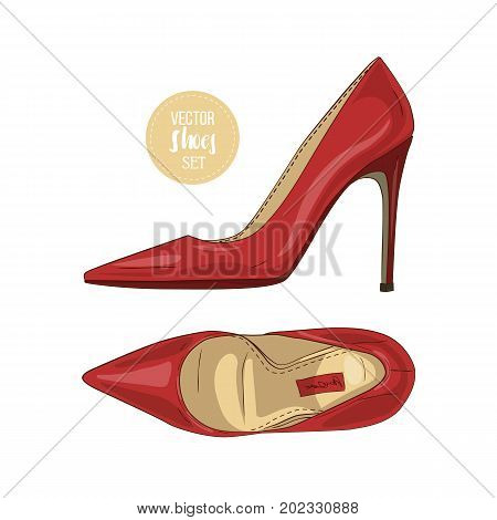 Vector color womens pointed toe stilettos. Vector illustration, EPS 10
