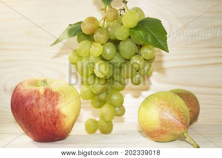 A pile of green grapes, apples and pears on a background of a village table. Green grapes with a green leaf and a red apple with pears on a light background. Grapes, an apple and pears with a contour.