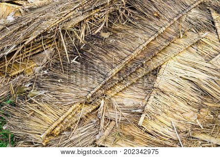 Close Up ,piles Of Dried Leaves Of The Nipa Palm Or Piles Of Thach For Roof. Local Thai Hand Made Ro