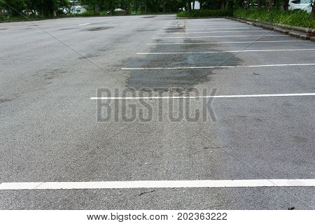 empty parking lot with white line for divide each lane