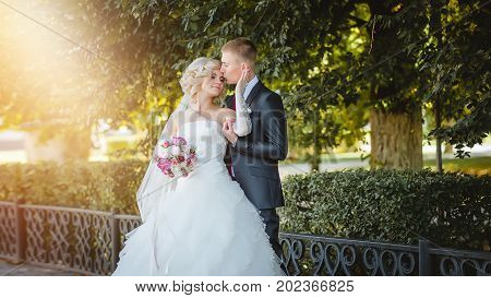 The bridegroom is kissing the bride in the bright rays of the sun among the green trees.