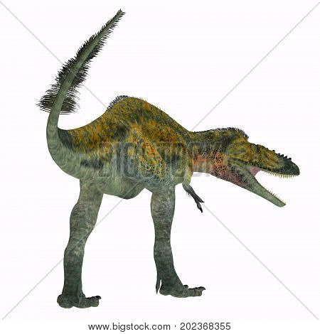 Alioramus Dinosaur Tail 3d illustration - Alioramus was a carnivorous theropod dinosaur that lived in Asia in the Cretaceous Period.